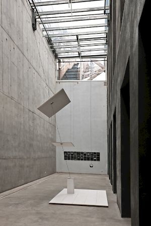 Observed Fall, 2010, Mahony, Foto: OK Offenes Kulturhaus, Otto Saxinger